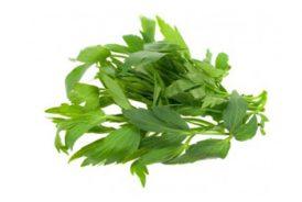 Leustean-verde