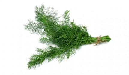Marar--verde-12