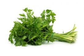 Patrunjel-verde